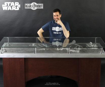 Han Solo Empire Strikes Back prop